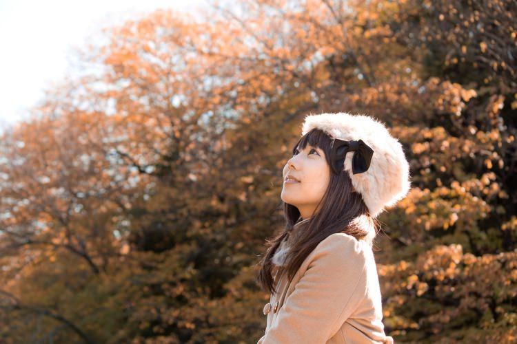 N825_akinoyousu500